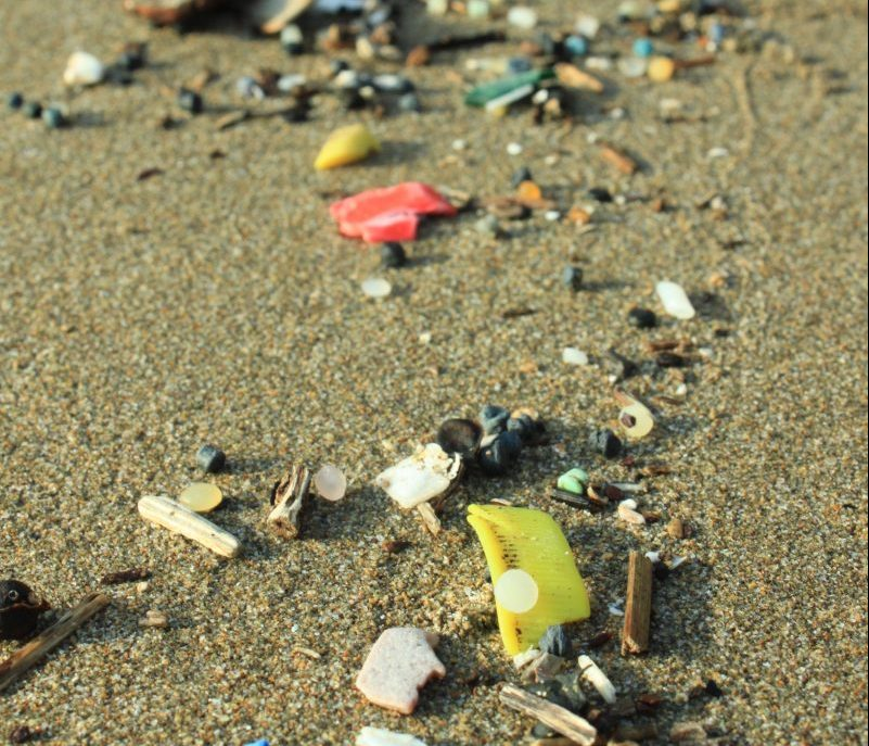 Plastic Ocean single use plastics